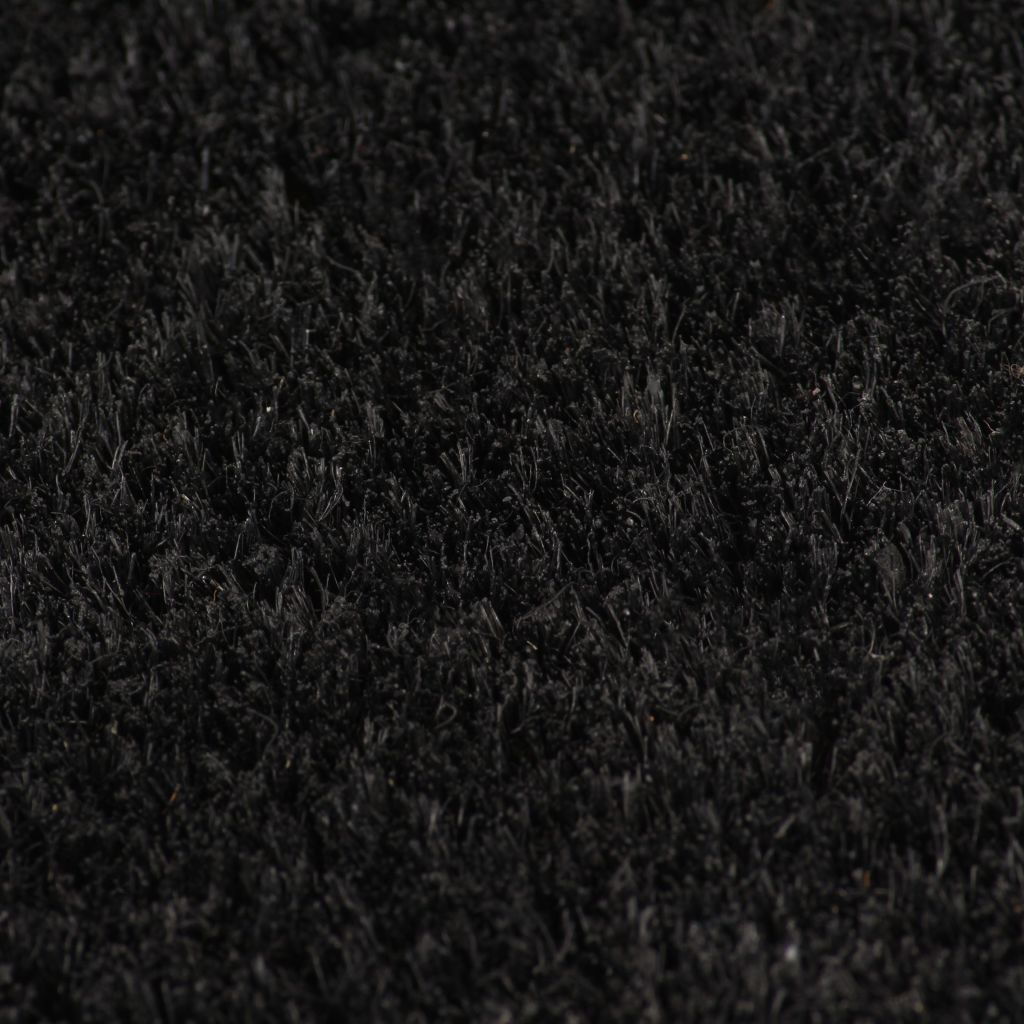 Litedpot Doormat Coir 17 mm 100x300 cm Black