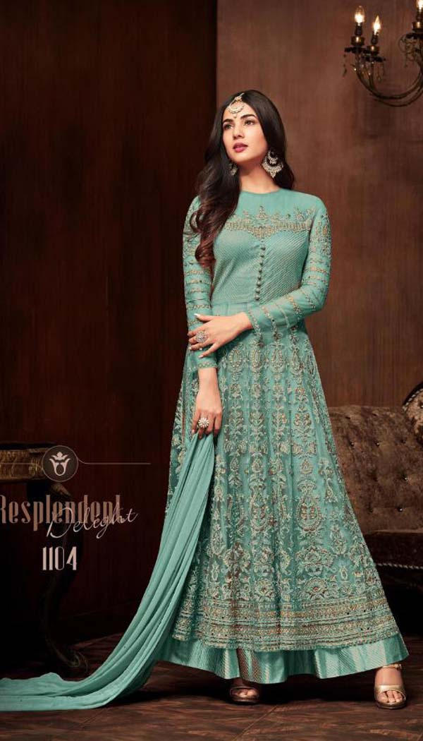 Sky Colored Net Fabric Embroidary Work Ethnic Wear Salwar Suit