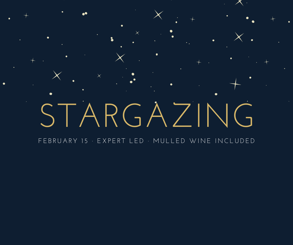 Stargazing Party