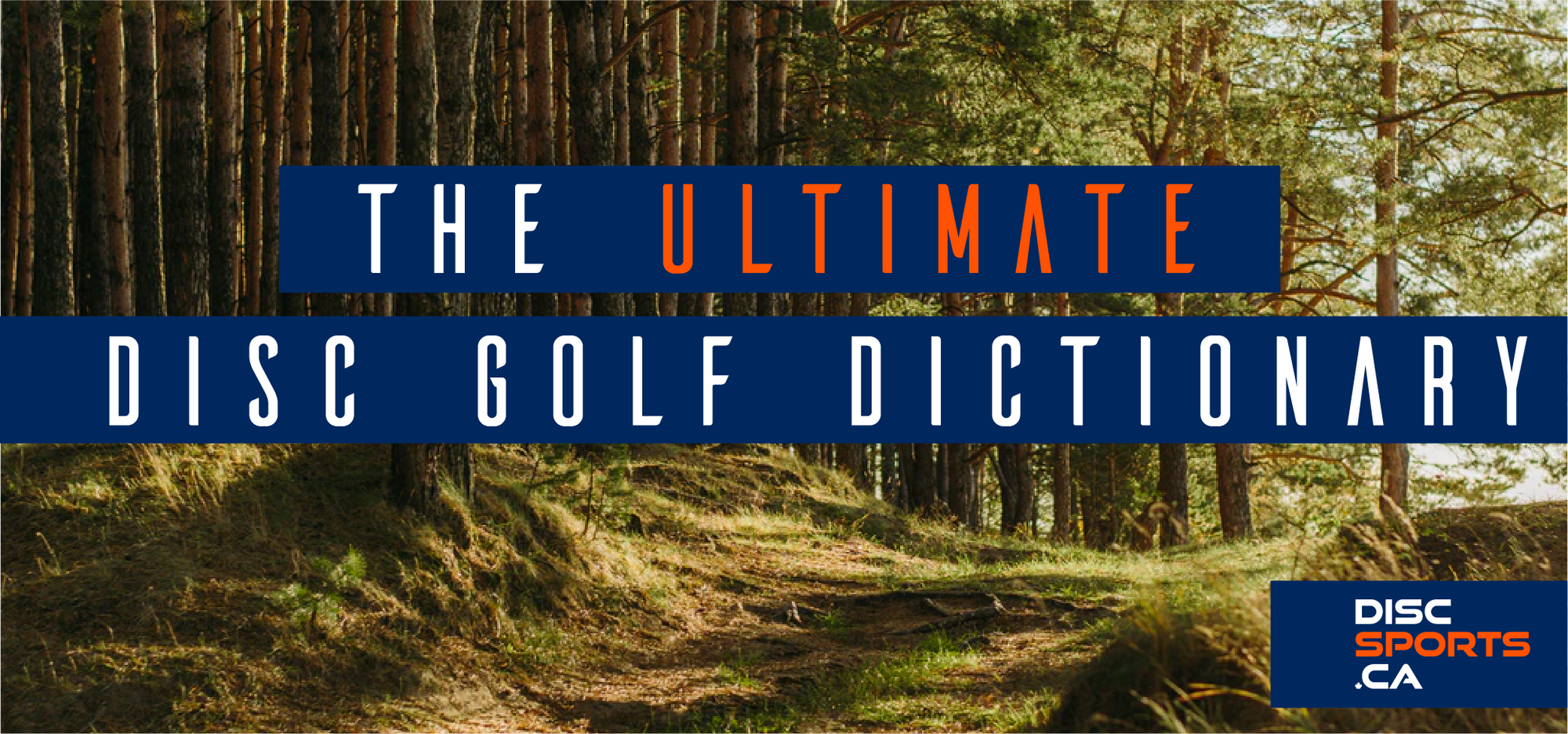 The Ultimate Disc Golf Dictionary