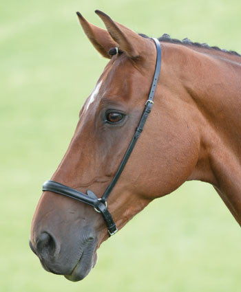 Blenheim Drop Noseband - Saoirse Saddlery