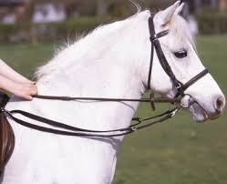 Traditional Grass Reins (Nylon) - Saoirse Saddlery