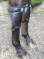 Neoprene Knee Boot - Saoirse Saddlery