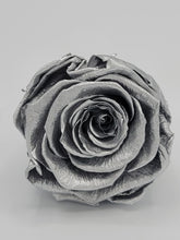 Load image into Gallery viewer, Classic Square Platinum Roses