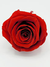 Load image into Gallery viewer, Classic Square Gold and Red Roses