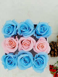 Classic Square Gender Reveal Mini Rosas Box Arrangement