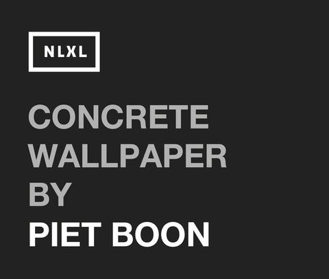 Concrete Wallpaper by Piet Boon (2012)