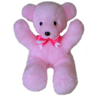 Baby Girls First Teddy Bear USA Made by American Bear Factory