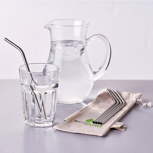 5 Stainless Steel Drinking Straws with Plastic-Free Brush & Organic Carry Pouch