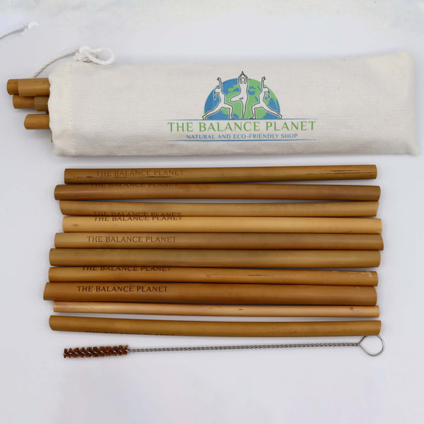 Bamboo Drinking Straws Set of 10 with Cleaning Brush & Storage Bag