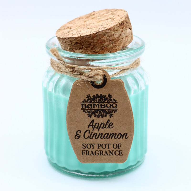 Apple & Cinnamon Pot Soybean Candle