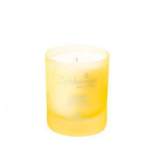 Load image into Gallery viewer, Citrine Crystal Coconut Wax Aromatherapy Candle