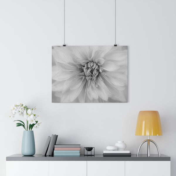 Red Dahlia Floral Wall Art | Giclée Art Print in Black and White