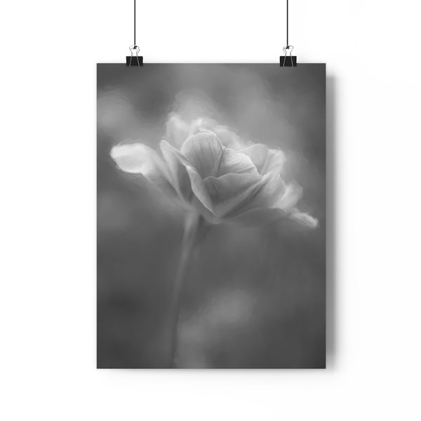 Angelique Tulip Wall Art - Giclée Art Print in Black and White
