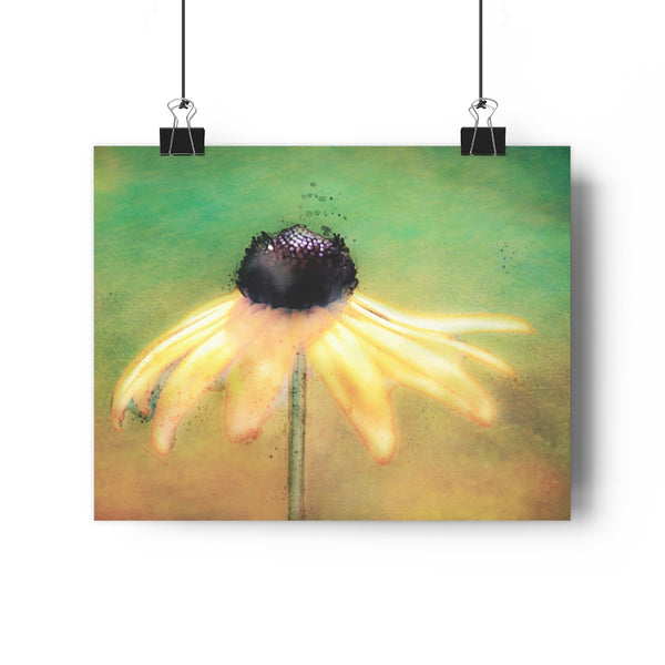 Dancing Brown Eyed Susan Watercolor Wall Art - Giclée Art Print