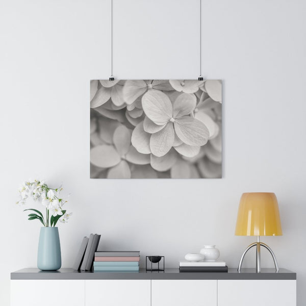 Hydrangea in Blue Vintage Fine Art Giclée Print - Dream in Color Wall Art