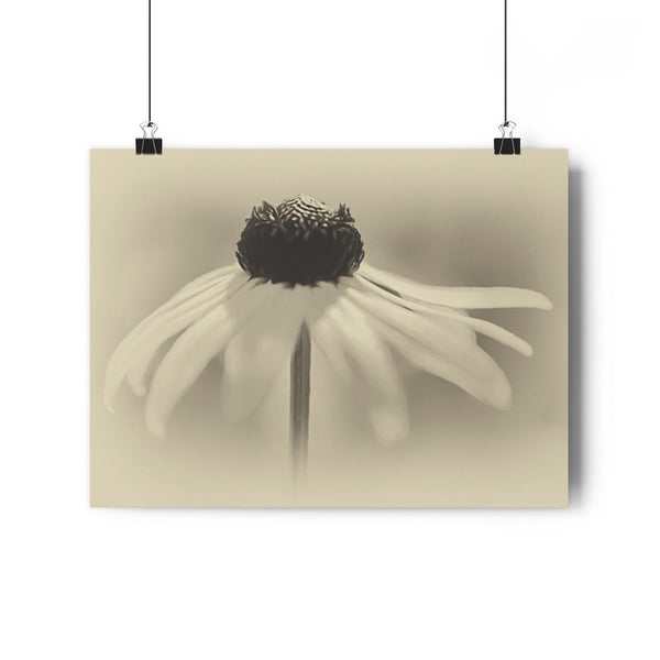 Dancing Brown Eyed Susan Vintage Fine Art Giclée Print - Dream in Color Wall Art
