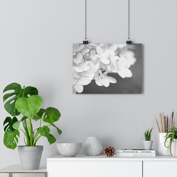 Hydrangea #3 Wall Art - Giclée Fine Art Print in Black and White