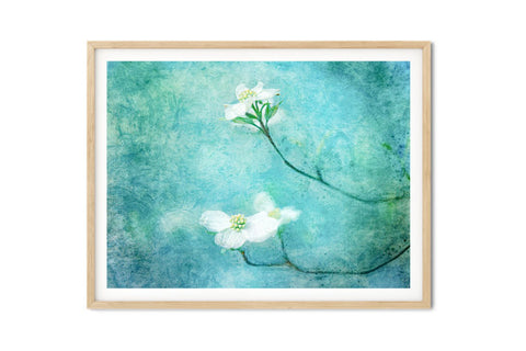 Dogwood Blooms Watercolor Floral Wall Art - Giclée Art Print