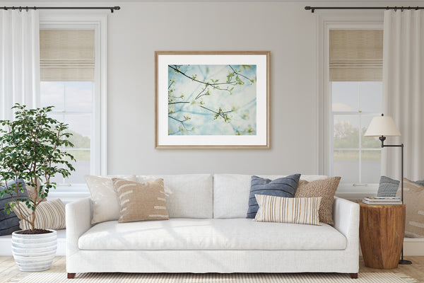 Dogwood Blooms In Heaven Wall Art - Giclée Art Print