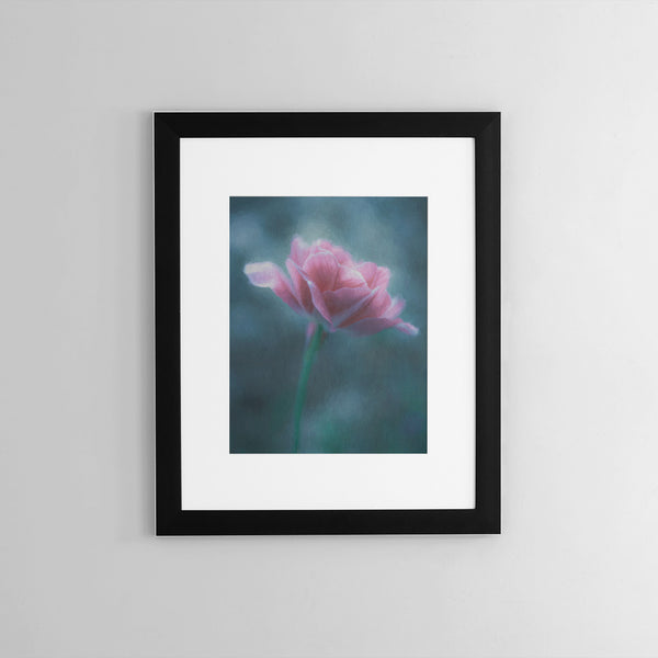 Angelique Tulip Wall Art - Giclée Art Print