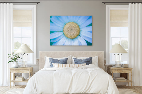 Cosmic Daisy Fine Art Giclée Print - Dream in Color Wall Art