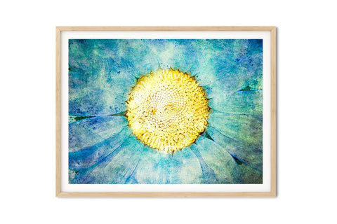 Cosmic Daisy Watercolor Floral Wall Art - Giclée Fine Art Print