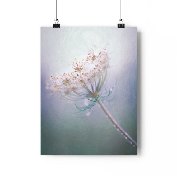 Queen Annes Lace Floral Fine Art Giclée Print - Dream in Color Wall Art