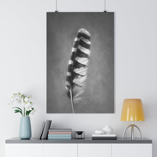 Barred Owl Feather Wall Art  - Giclée Art Print in Black and White