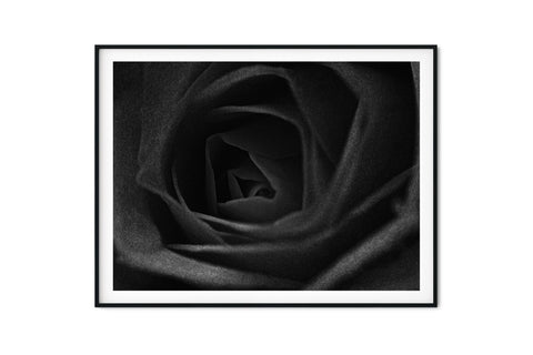 Black Rose Wall Art - Giclée Art Print