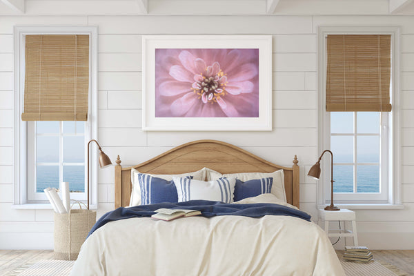 Precious Pink Zinnia Floral Fine Art Giclée Print - Dream in Color Wall Art