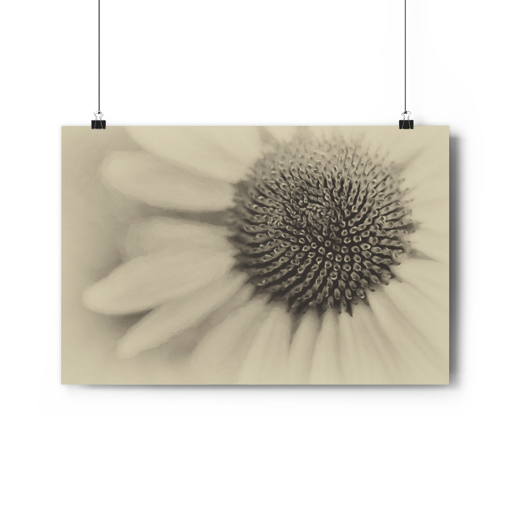 Echinacea Purple Coneflower Vintage Wall Art - Giclée Art Print