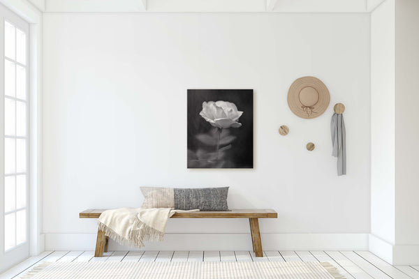 Vintage Style Peach Rose Wall Art - Giclée Art Print in Black and White