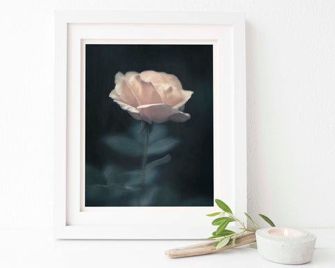 Vintage Style Peach Rose Wall Art - Giclée Art Print
