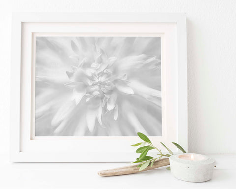 Light Yellow Dahlia Floral Wall Art | Giclée Art Print in Black and White