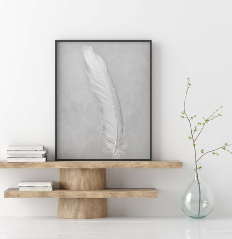 White Cockatoo Feather Wall Art  - Giclée Art Print in Black and White