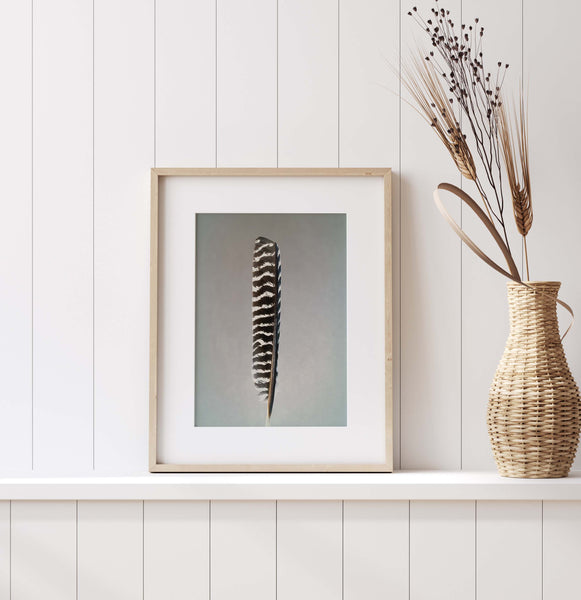 Wild Turkey Feather Wall Art  - Giclée Art Print