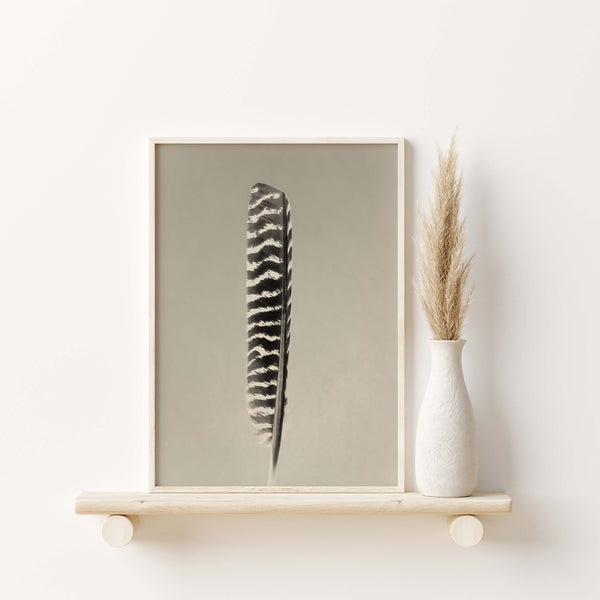 Wild Turkey Feather Wall Art  - Giclée Art Print in Vintage Sepia