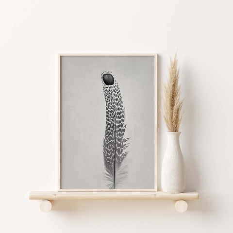 Grey Peacock Pheasant Feather #2 | Feather Wall Art  - Giclée Art Print in Black and White