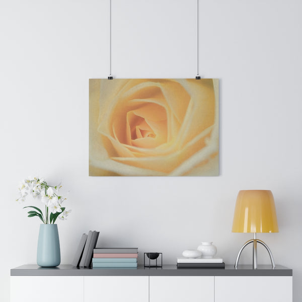 Yellow Rose Wall Art - Giclée Art Print