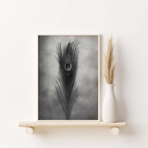 Peacock Feather Art | Feather Wall Art  - Giclée Art Print in Black and White