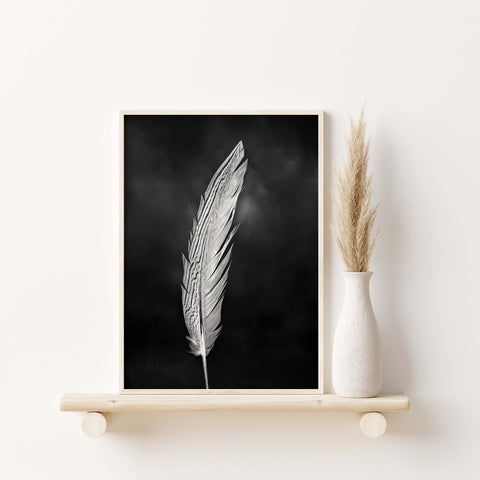 Pheasant Feather #2 Print | Feather Wall Art  - Giclée Art Print in Black and White