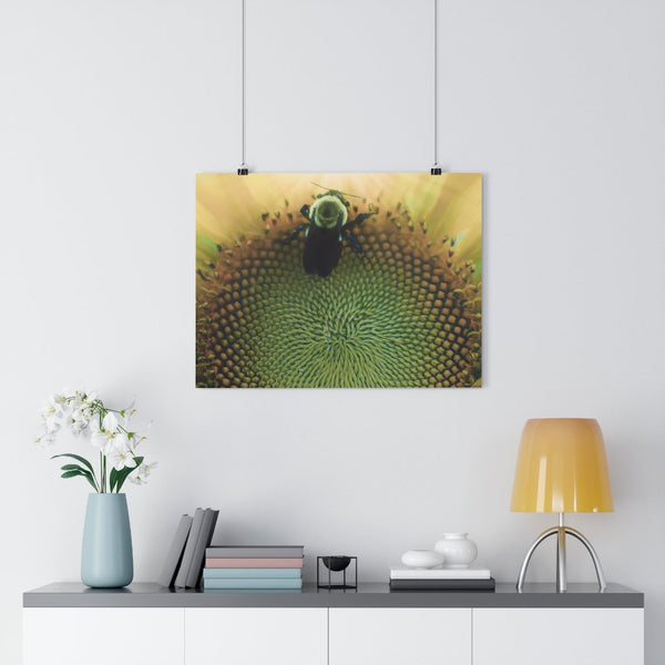 Bumblebee Heaven Fine Art Giclée Print - Dream in Color Wall Art