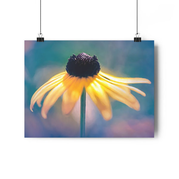 Dancing Brown Eyed Susan Fine Art Giclée Print - Dream in Color Wall Art