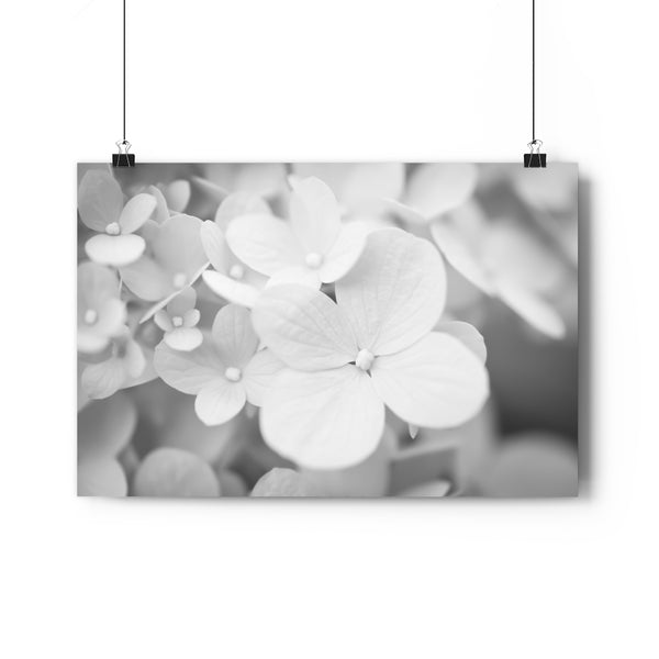 Hydrangea #4 Wall Art - Giclée Fine Art Print in Black and White