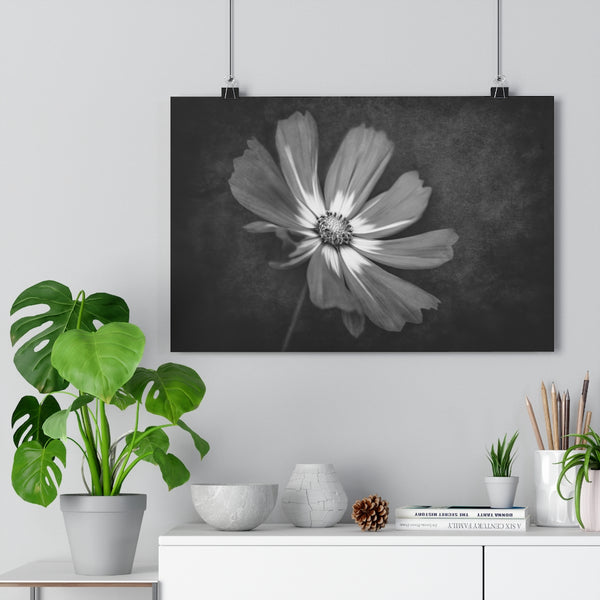 Deep Woods Cosmo Floral Wall Art | Giclée Art Print in Black and White
