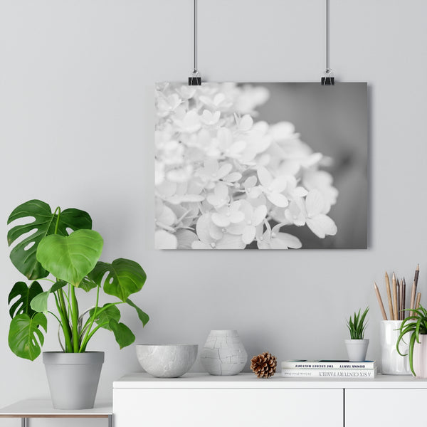 Hydrangea #5 Wall Art - Giclée Fine Art Print in Black and White