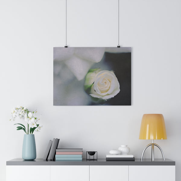 White Rosebud Wall Art - Giclée Art Print