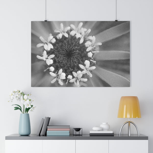 Ferris Wheel Zinnia Wall Art - Giclée Art Print in Black and White
