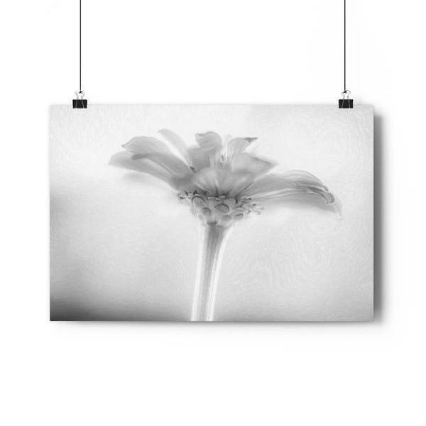 Blue Sky Pink Zinnia Floral Fine Art Giclée Print in Black and White - Dream in Color Wall Art